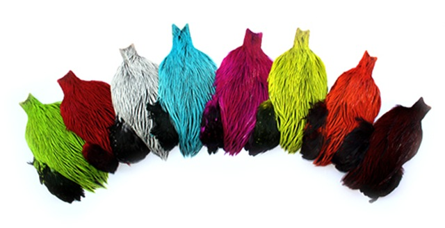oli-whiting-brahma-rooster-capes