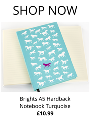 Brights A5 Hardback Notebook Turquoise from RB Equestrian