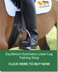Equilibrium Symmetry Lower Leg Training Strap from RB Equestrian