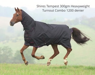 Shires Tempest Turnout Rug from RB Equestrian