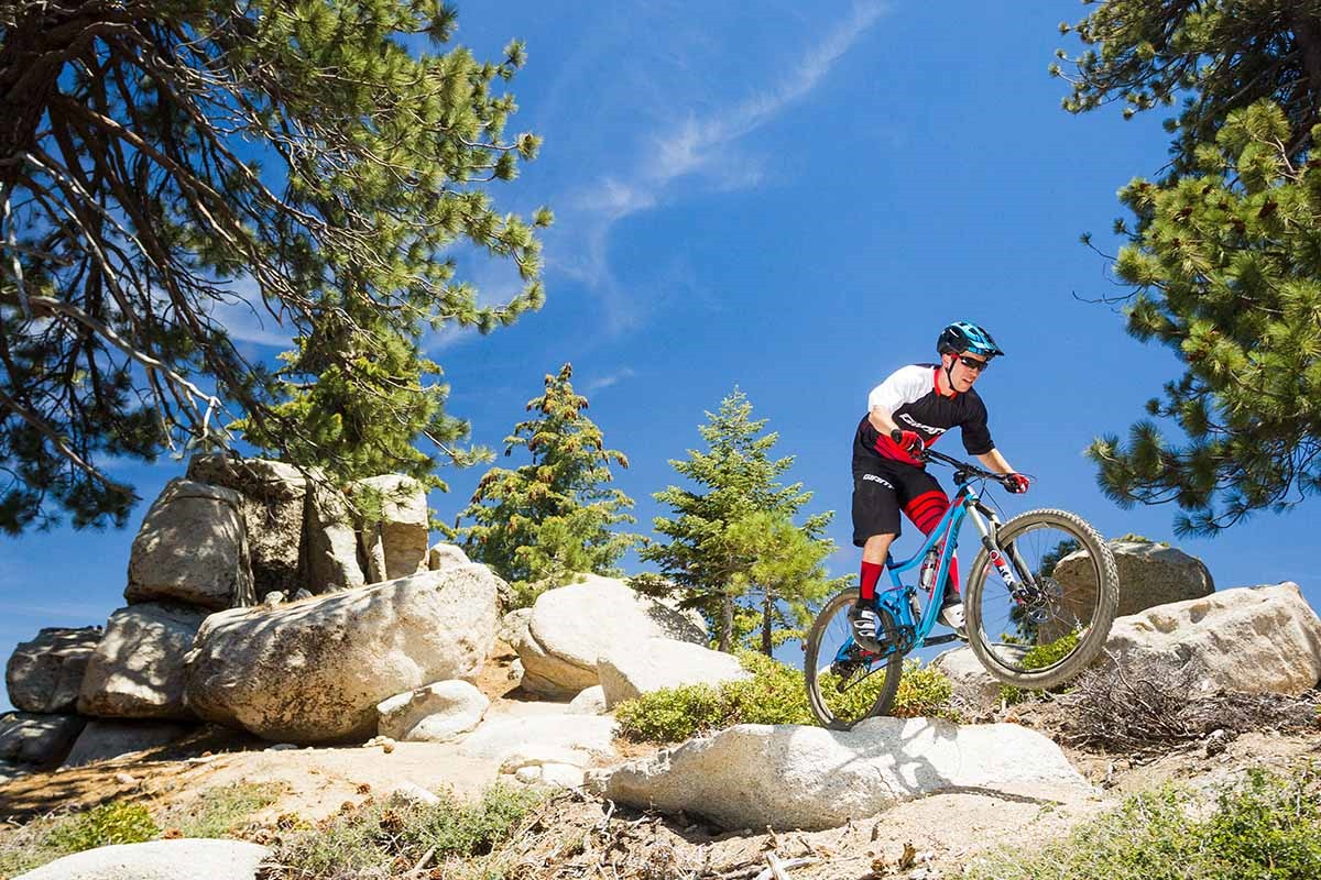 Top 2016 Bikes - Giant, Cannondale, Whyte and Specialized