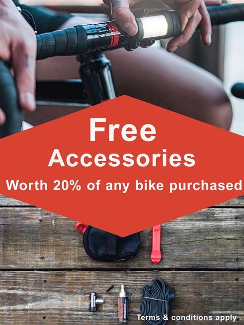 Jan_sales_Accessories
