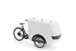 Raleigh Pro Trike Xl