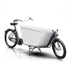 Raliegh Pro Bike Midmotor