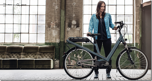 Riese and Muller culture lady ebike
