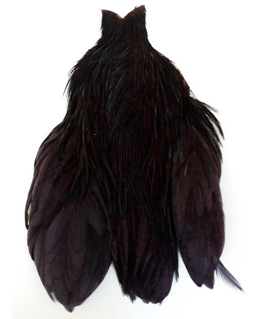 Big Black Claret