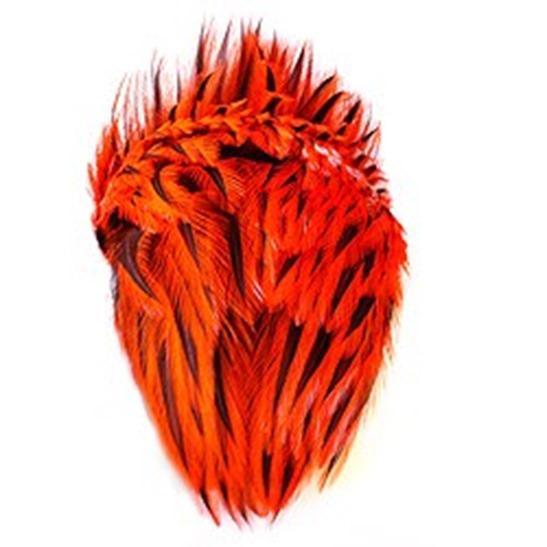 lakeland-polish-brahma-rooster-cape