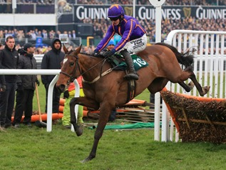 horse-racing-2015-cheltenham-festival-gold-cup-day-cheltenham-racecourse-wicklow_3276333