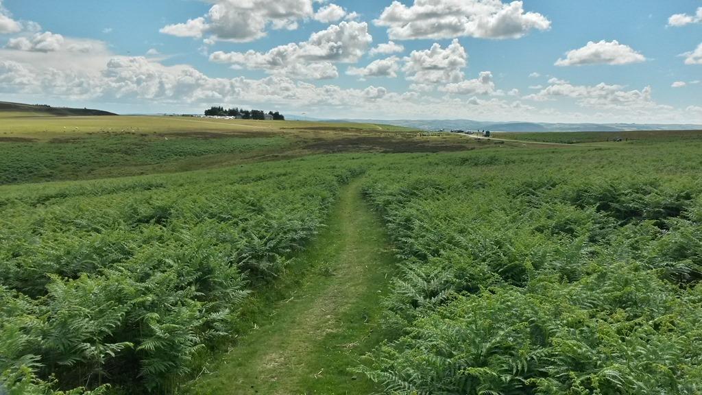 Long_Mynd_MTB_trails