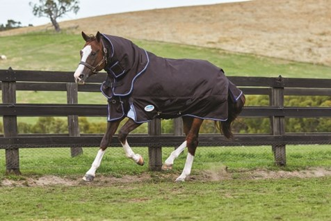 Redpost Equestrian Horse Riding Country Clothing Horse