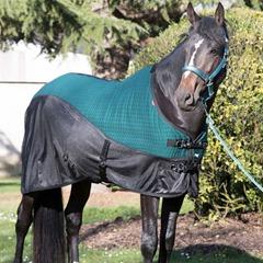 Lemieux Quot Matchy Matchy Quot Horse Wear Redpost Equestrian