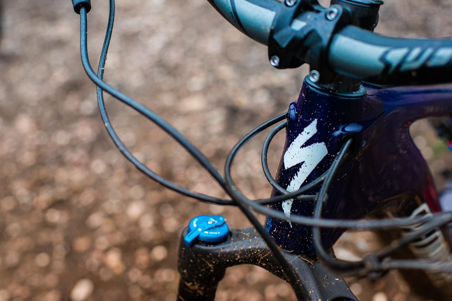 The brand new Specialized Turbo Levo is here! | Rutland Cycling