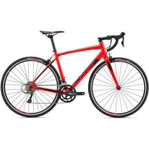 Giant-Contend-Red-2019-1