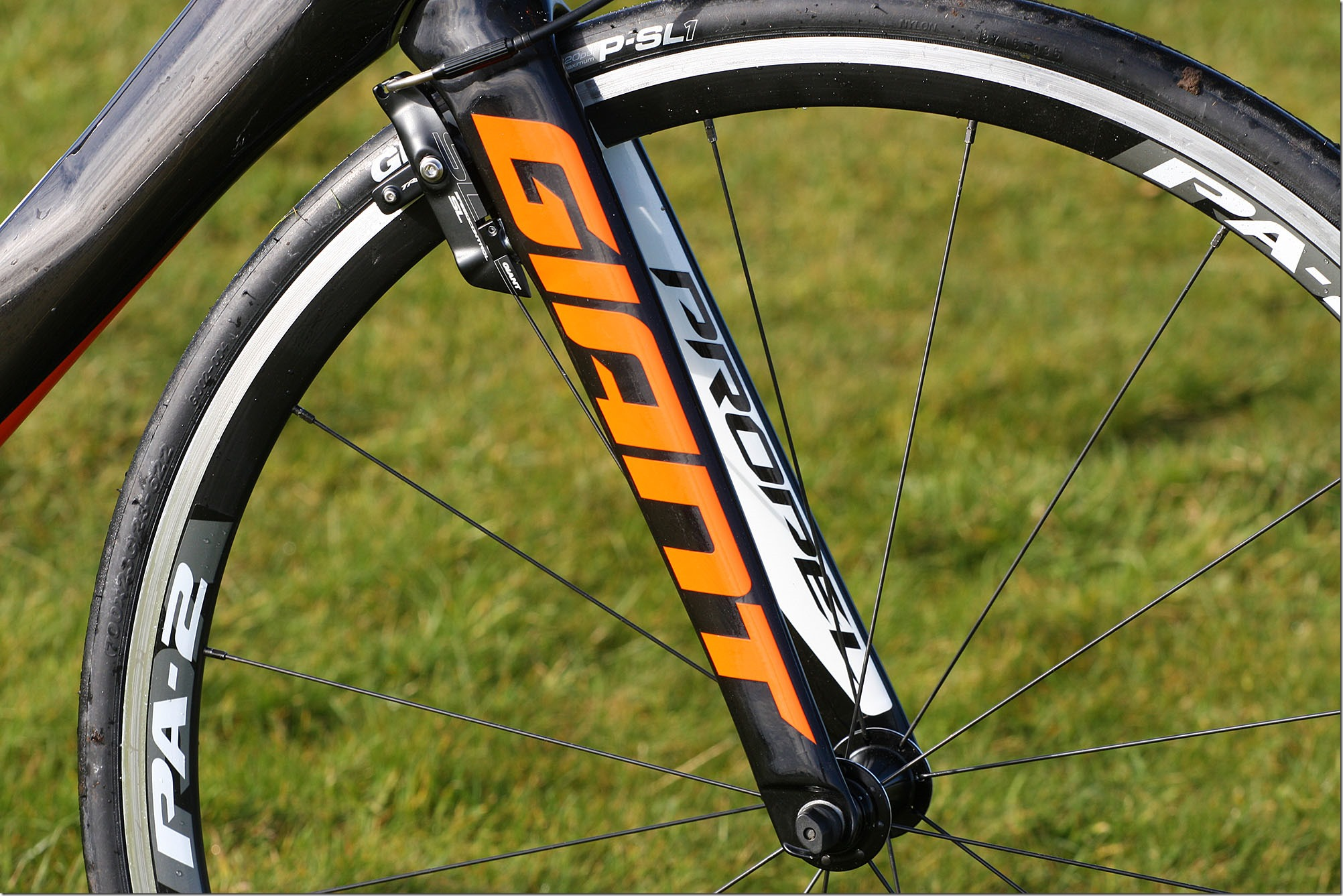 giant-propel-advanced-1-fork