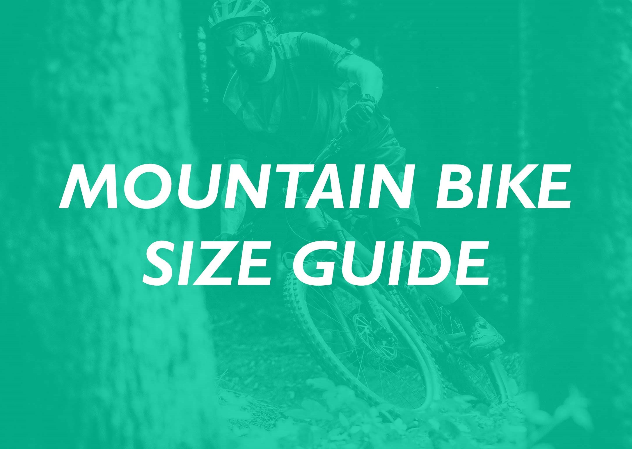 Mountain Bike Size Guide