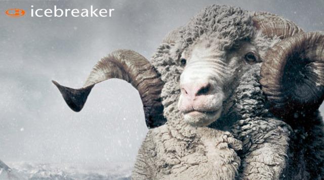 Icebreaker-Merino-Clothing-Review-Blog-Article