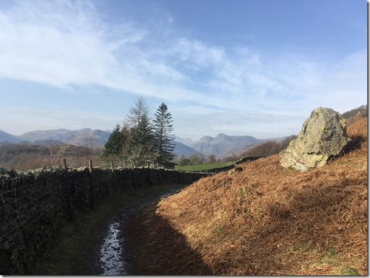 Looking across to the Langdales from Loughrigg Fell
