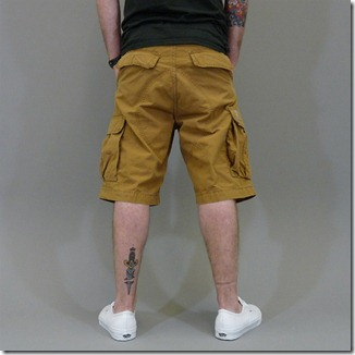 cargartt cargo shorts brown