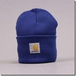 carhartt watch hat blue